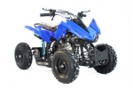 "Das neue Model Quad PYTHON 6"" mit E-Starter, Highlight 49cm³ 4-Takt Mini Quad, Kinderquad"